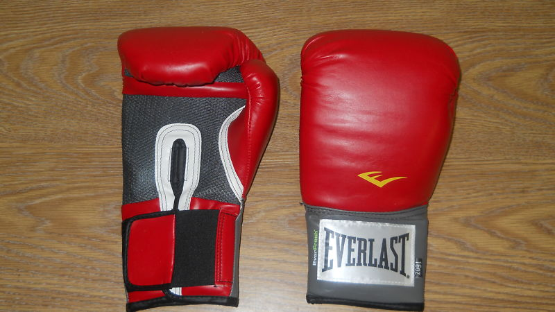 Everlast 2116 Pro Style Training Gloves Red 16 oz